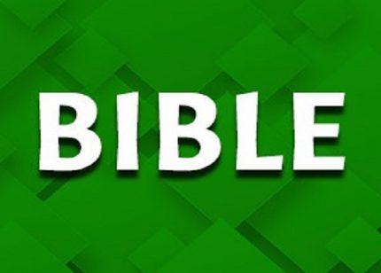 xxxx_Bible Games